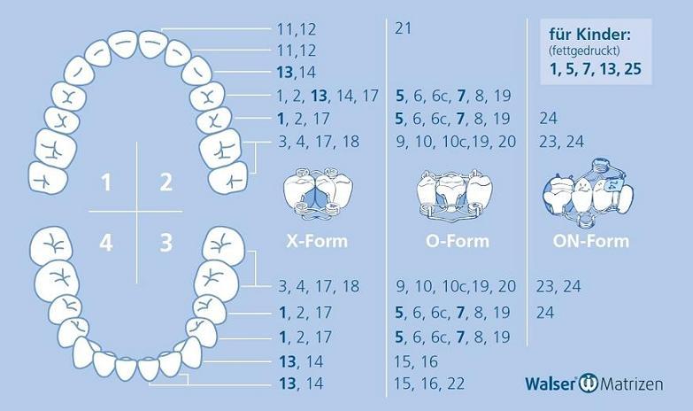 Aufsteller zur einfachen Auswahl der Zahn-Matrizen