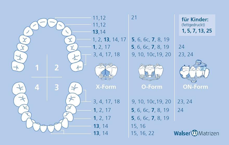 Wie Viele Zähne Hat Ein Kind Mit 2 Jahren